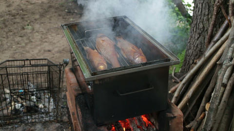 Smokehouse with fish Live Action