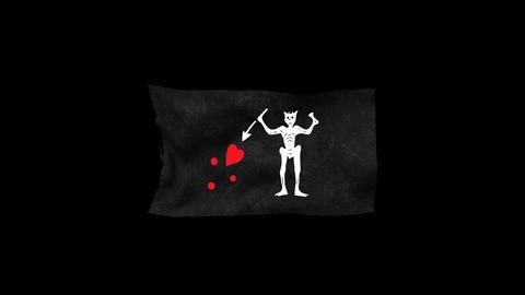 Pirates' Black Flag 3 Animation