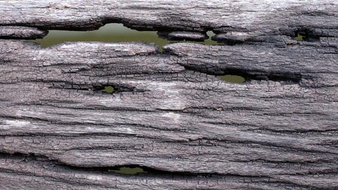 Old wooden floor with holes and water background Footage
