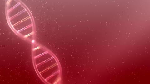 DNA Strand Genome image 5 A2f 4k Animation
