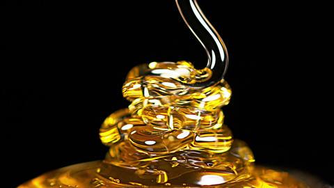 Honey Flowing against Black Background, Slow Motion Live Action