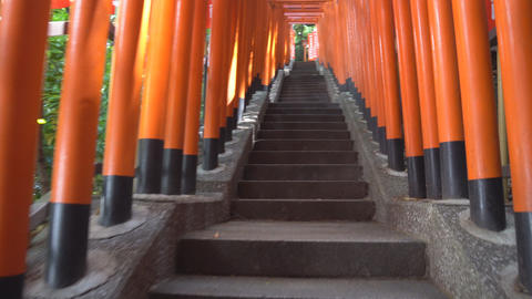 Torii(s) at Hie Shrine, Akasaka, Tokyo, recorded on 13, May, 2016 Footage