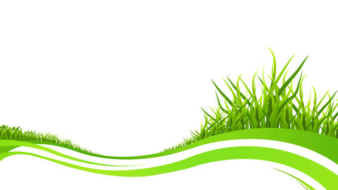 Grass growing animation with some green stripes on white background After Effects Template