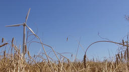 eolic windmill turbine wind renewable energy wheat farm slow motion 120fp Footage