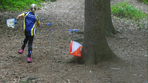 Runner pass orienteering checkpoint in a forest. Position of a trail running sport with navigation Footage