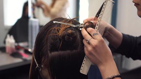 beautiful woman combing wet hair. stylist brushing woman hair in salon Footage