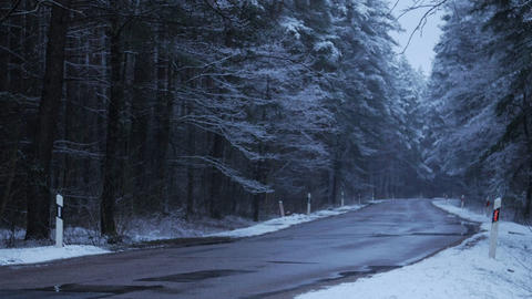 Empty road on a snowy forest road at dusk. Winter season Live Action