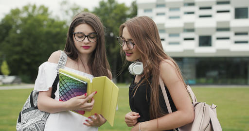 Two teen girls talking together in the campus. Two female college students while Live Action