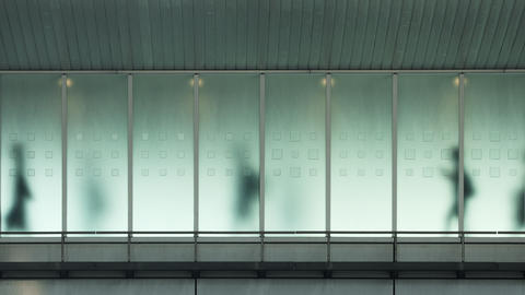 Looping background of people walking in Tokyo Live Action