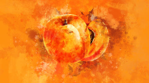 The appearance of the apricot on a watercolor background Animation
