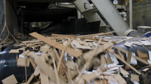 pile of used paper transported by production line at plant Live Action