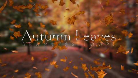 Autumn Leaves モーショングラフィックステンプレート