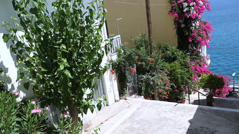 Typical old greek street. Narrow street with atmospheric floral walls Live Action