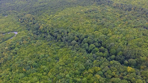 Aerial drone footage of beautiful landscape and nature and green forest Footage