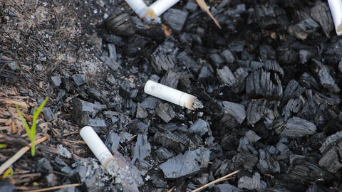 Discarded cigarette butt Footage