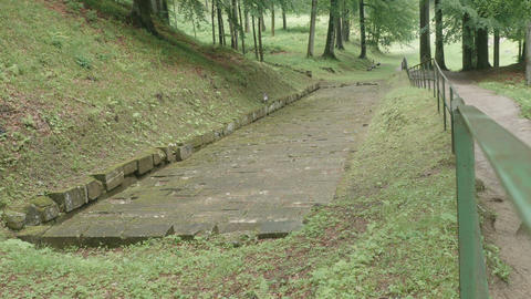 Ancient Dacian Road in Forest Footage