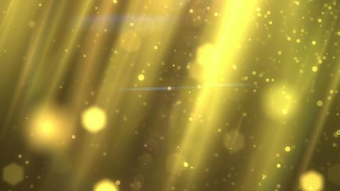 SHA Yellow Light Effects Animation