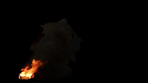 Burning Tire Animation