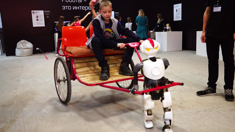 Lipetsk, Russian Federation - January 25, 2018: Exhibition of robots. The robot Live Action
