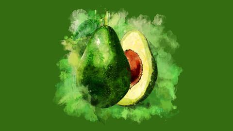 The appearance of the avocado on a watercolor stain Animation