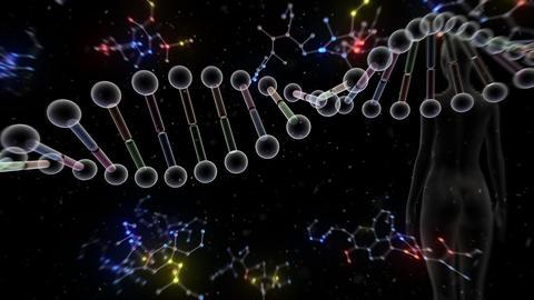 DNA Strand Genome image 6 B5d human 4k Animation