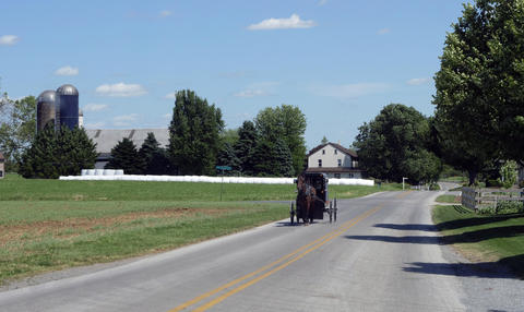 View of an Amish Horse and Buggy Going down the Road フォト