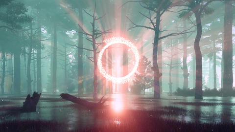 Mystical foggy forest with glowing portal to another world Animation