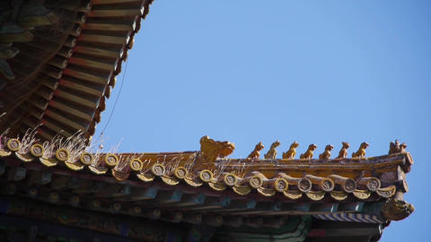 weeds grass & sculpture on roof eaves.China ancient... Stock Video Footage