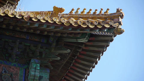 weeds grass & sculpture on roof eaves.China ancient architecture Beijing For Footage