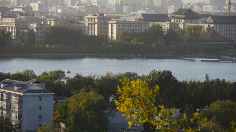 panoramic view of BeiJing BeiHai Park & flock of white pigeons on lake Footage