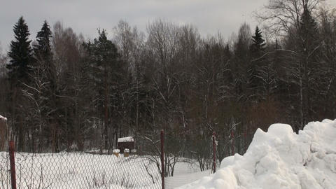 Wooden house in the winter forest Stock Video Footage