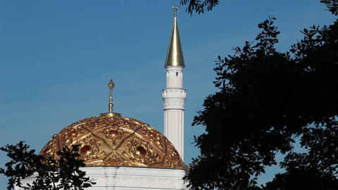 Landscape  With  Mosque stock footage