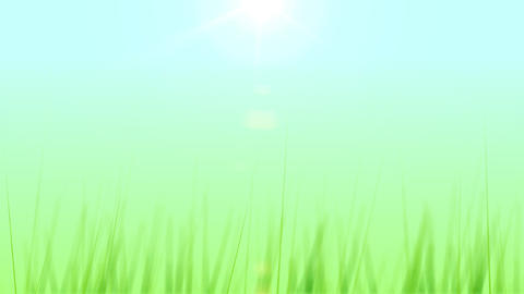 BG GRASS 003 30fps Stock Video Footage