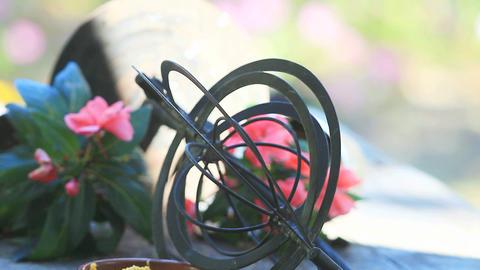 Backyard birds on spinning garden ornament Footage