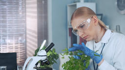 In modern laboratory smart woman in lab coat and protective glasses examining Footage