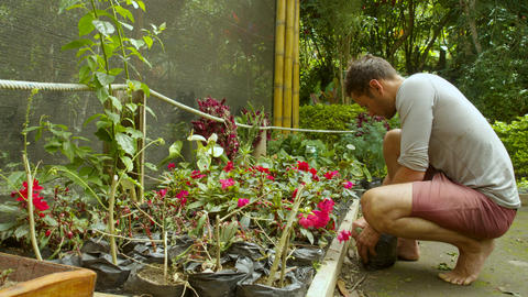 Adult Man Gardener Taking Care Of His Plants In His Garden Live Action
