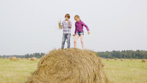 Happy teenagers throwing up dry straw on haystack. Carefree boy and girl Live Action