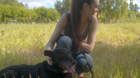 Women volunteers caress the dogs Live Action