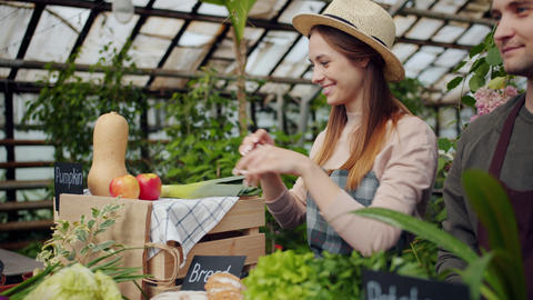 Friendly saleswoman packing organic vegetables during farm sale in greenhouse Live Action
