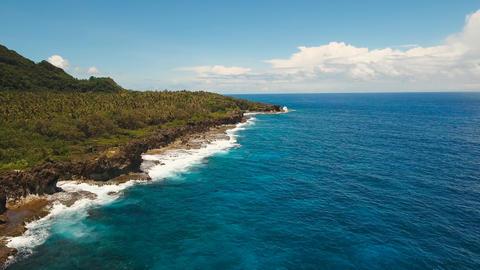 Rocky coast of tropical island Live Action