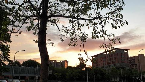 sunset,sky,tree,city Live影片