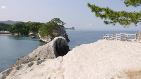 Sightseeing shizuoka dougashima V1-0011 Footage