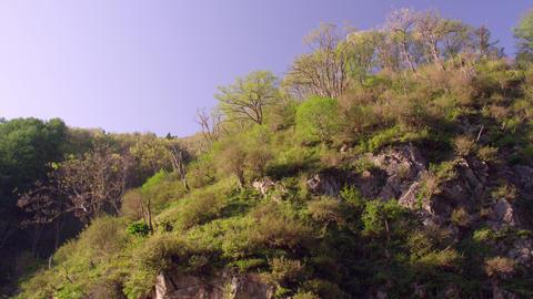 Spa nagano jigokudani V1-0095 Footage