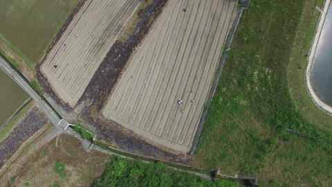 Aerial view while slowly descending from above the field Footage