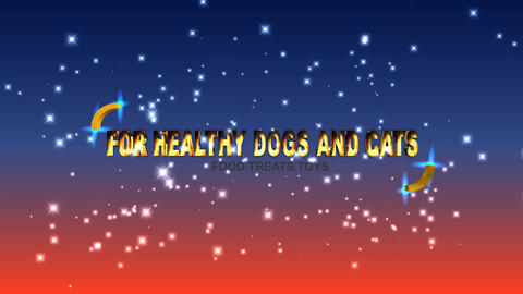 117 For healthy cats and dogs animated template with slogan for selling products for animal Animation