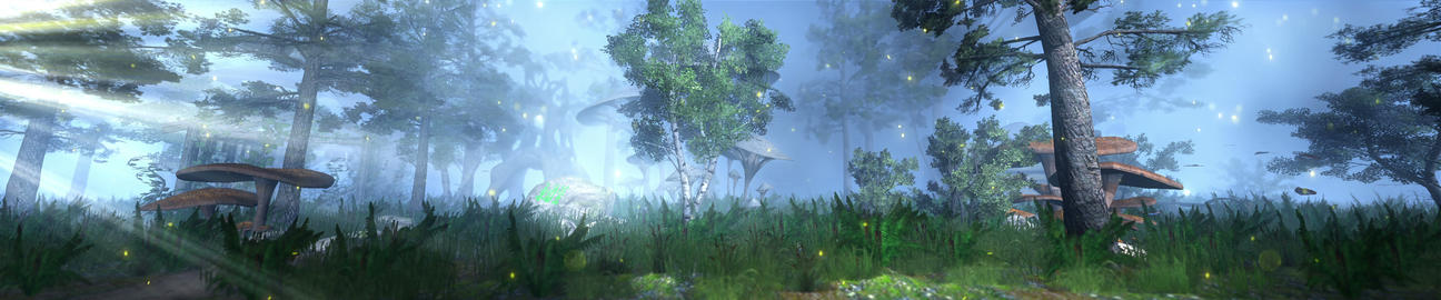 Enchanted forest Animation