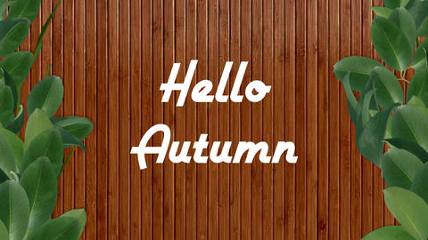 Green leaves border against wooded fence background with the lettering Hello Autumn Animation