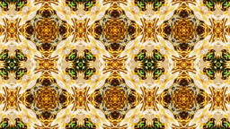Autumn/Fall Golden Harvest Kaleidoscope Animation