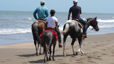 Country family riding horse on the seashore closeup Live Action