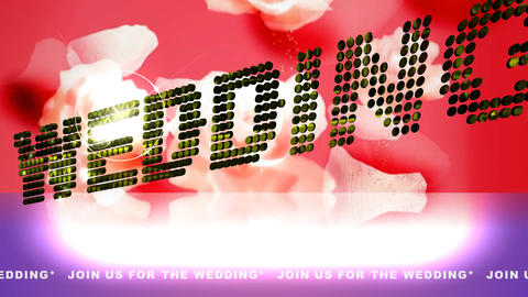130 Message 'Join us for the wedding' animated wedding invitation Animation